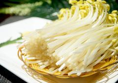 黄豆芽具有哪些药用价值,如何挑选优质的黄豆芽呢?