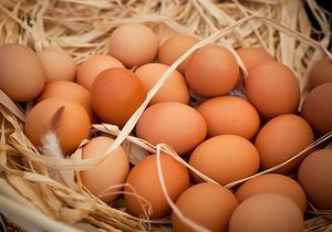 鸡蛋具有哪些营养价值,鸡蛋不能和什么食物一起吃?