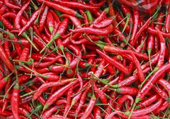 辣椒的作用