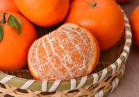 橘子皮的用处分享