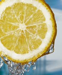 阳台种植柠檬技巧