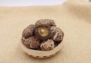 香菇具有哪些营养成分,香菇不能与哪些食物一起食用?