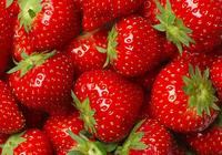 草莓的营养功效
