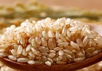 红糙米与糙米的区别