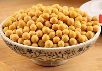 黄豆与黄豆芽的对比