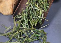 黄芽茶的种类