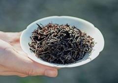 永春佛手茶的种植方法