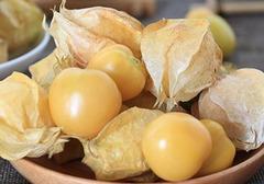 灯笼果的食用方法及功效作用